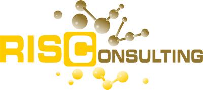 RIS Consulting GmbH